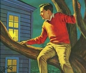 z-used-boy-in-tree-2