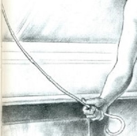 used-drawing-cane-hold-49