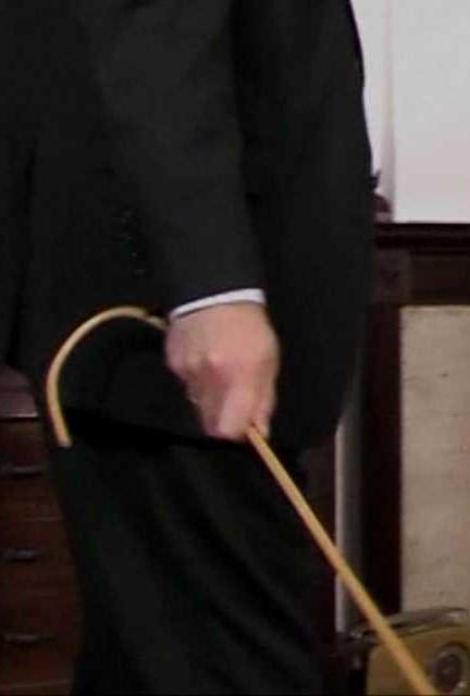 z used cane holding sting (3)