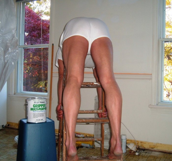 z used pants over steps ladder painter workplace