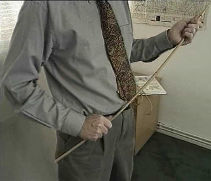 z used cane holding office Sting