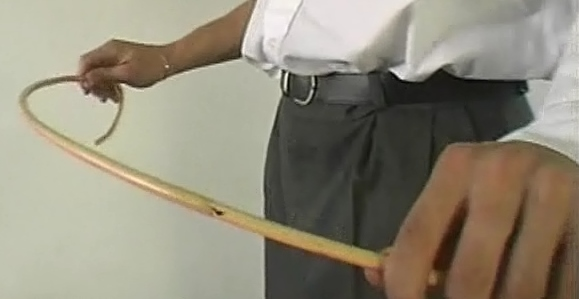 z used cane holding (5)